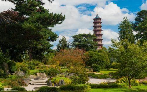 Kew Gardens cina garden