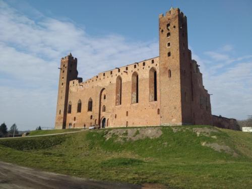 Ruiny krzyżackiego zamku wRadzyniu Chełmińskim. (aut. Marcin Gorączko)