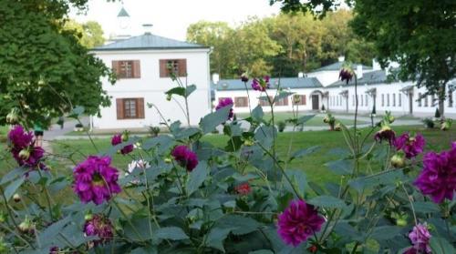Zalesie – widok pałacu odstrony parku